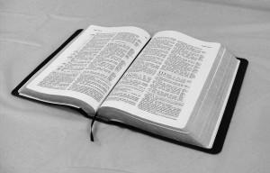 bible-369989_640