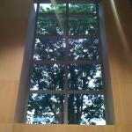Window Our Lady of Lourdes Milwaukee