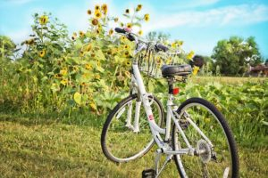bicycle-871265_640